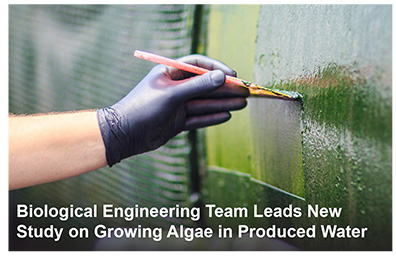 Biological Engineering Team Leads New Study on Growing Algae in Produced Water