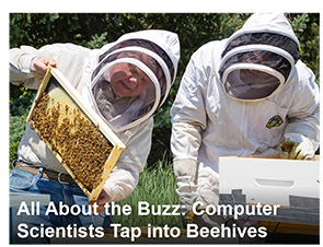 All About the Buzz: Computer Scientists Tap Into Beehives