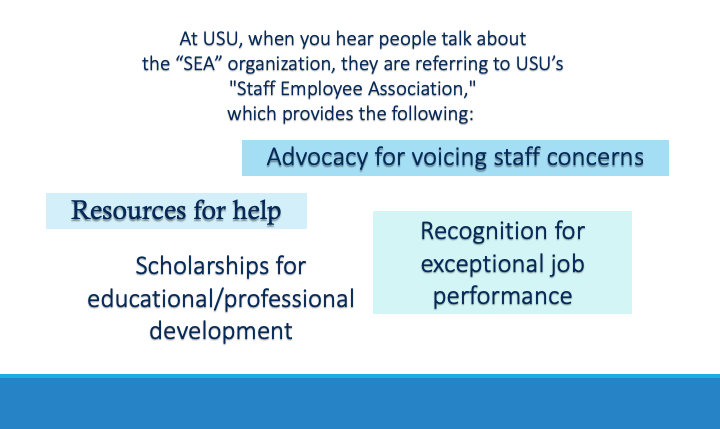 At USU, when you hear people talk about the SEA organization, they are referring to USU's Staff Employee Association, which provides advocacy for voicing staff concerns, resources for help, scholarships for educational/professional development, recognition for exceptional job performance.