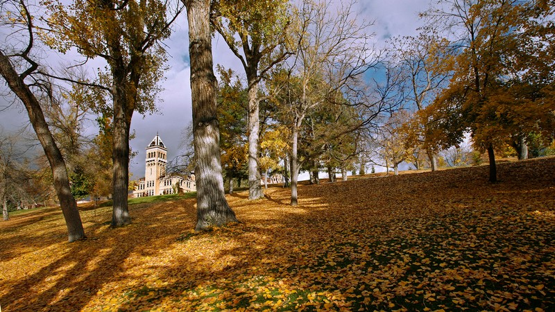 Old Main hill with fall leaves. Old Main in the background.