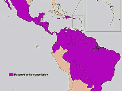 a map of active Zika transmission in the Americas