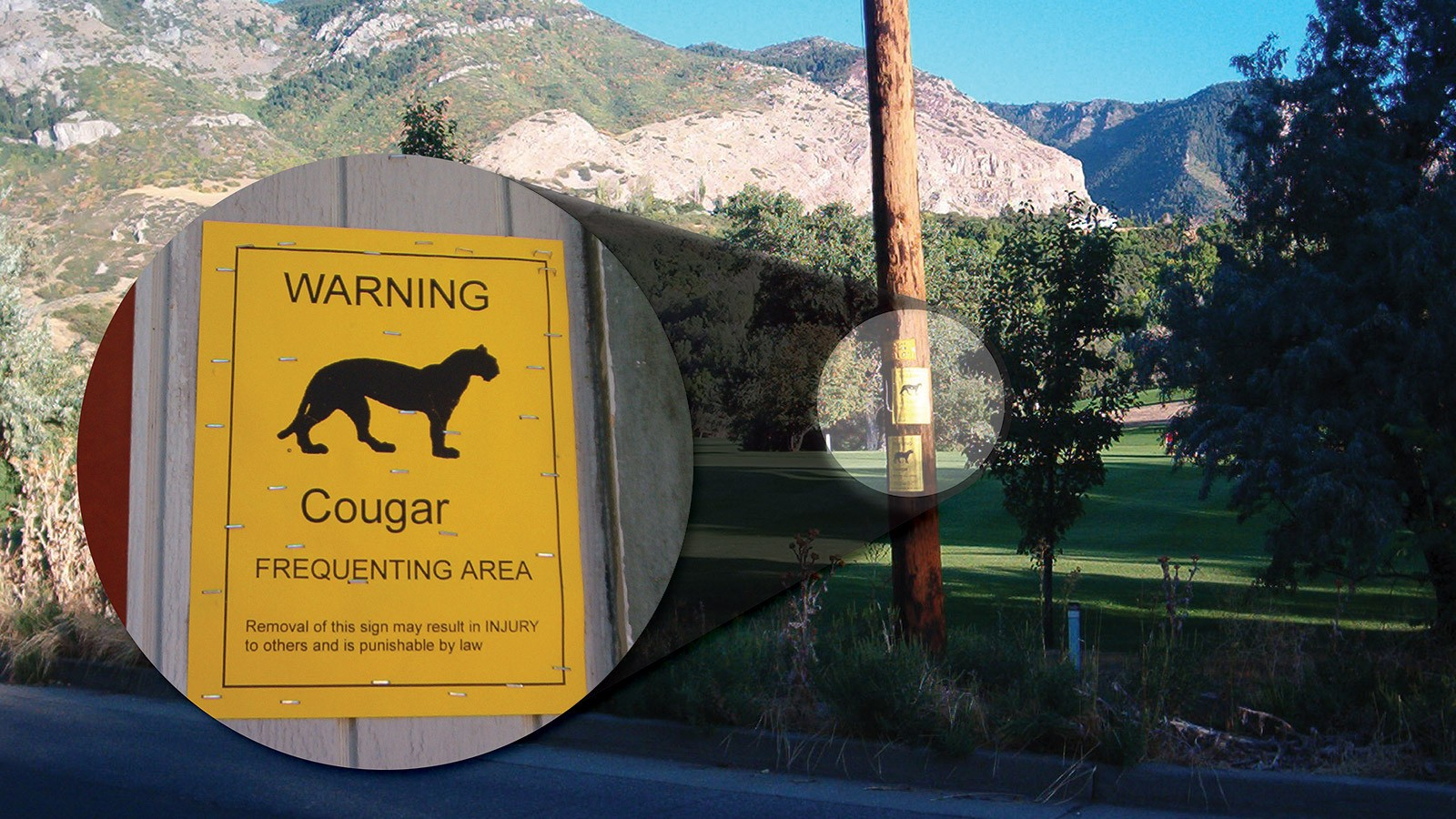 Golf course in the Ogden, Utah area with posted wildlife warnings.
