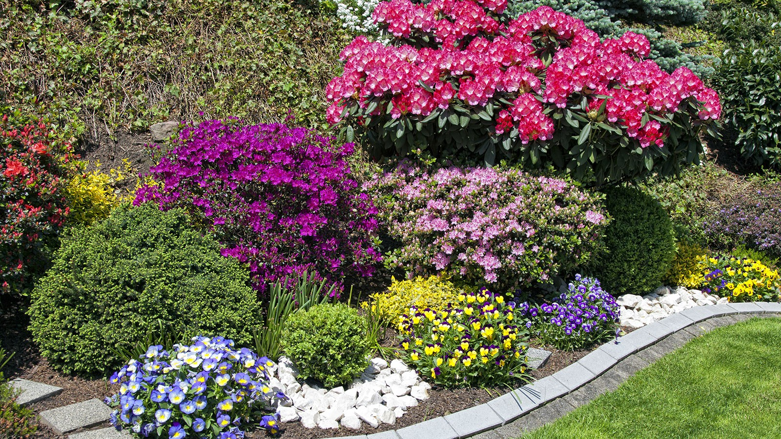 flower garden with perennials.