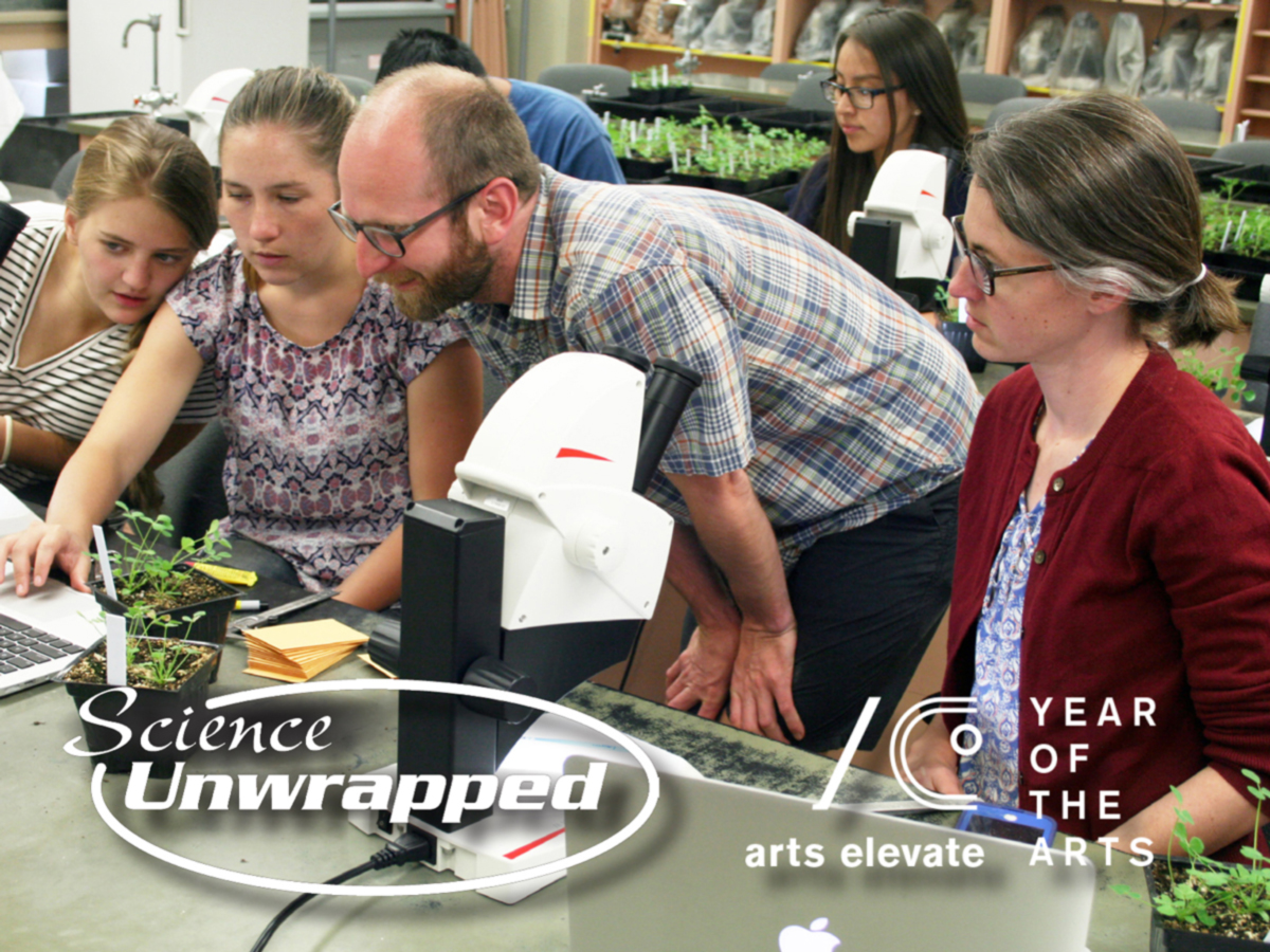 Science Unwrapped Year of the Arts